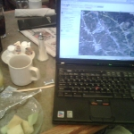 Fruit and maps.